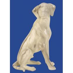 Dekorácia pes