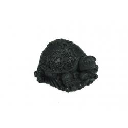 Šungit - Múdra korytnačka
