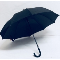 Dáždnik Pánský