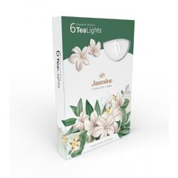 Čajová sviečka 6ks Jasmine